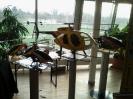 2012 Besuch Indoorgaudi Muenchen